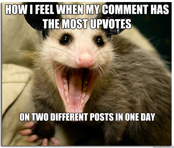 How I feel when my comment has the most upvotes on TWO different posts in one day  Over-Excited Possum