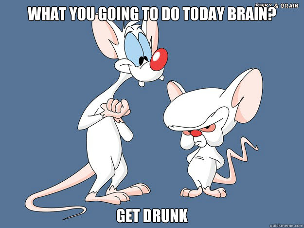 What you going to do today Brain? Get Drunk