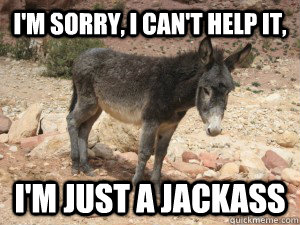 I'm sorry, I can't help it, I'm just a jackass - I'm sorry, I can't help it, I'm just a jackass  Depressed Donkey