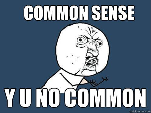 125f59512f7040e9323bd69c170ece87241aed913c53b7dc1a1fef06b290c422 common sense y u no common y u no quickmeme