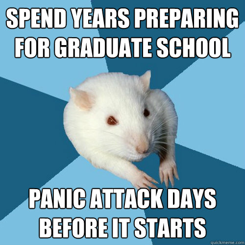 Spend Years Preparing For Graduate School Panic Attack Days Before