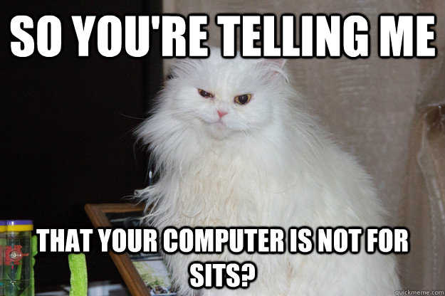 So you're telling me That your computer is not for sits? - So you're telling me That your computer is not for sits?  Misc