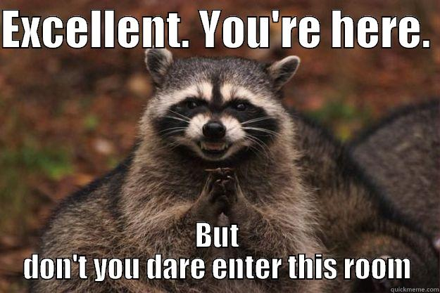 12a6fc3e699558823f49dfe362e868721e32c5c84e4faab66ea4624b53346f98 evil plotting raccoon memes quickmeme