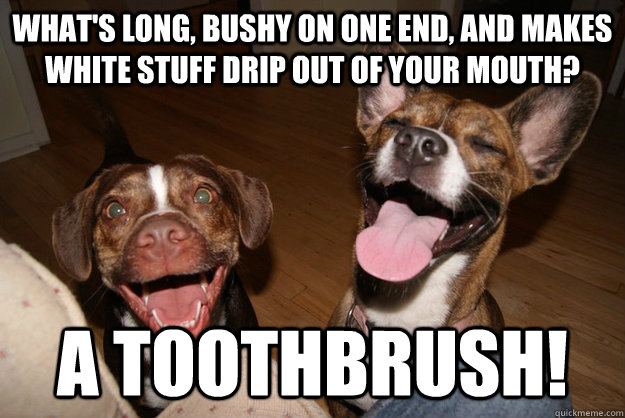 What's long, bushy on one end, and makes white stuff drip out of your mouth? A toothbrush!