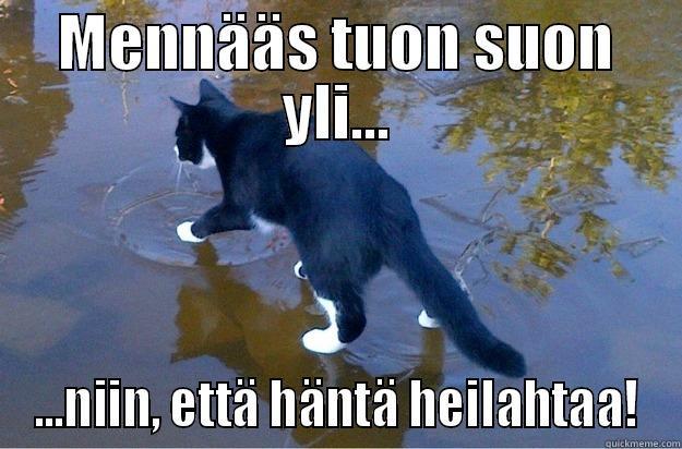 MENNÄÄS TUON SUON YLI... ...NIIN, ETTÄ HÄNTÄ HEILAHTAA! Jesus Cat