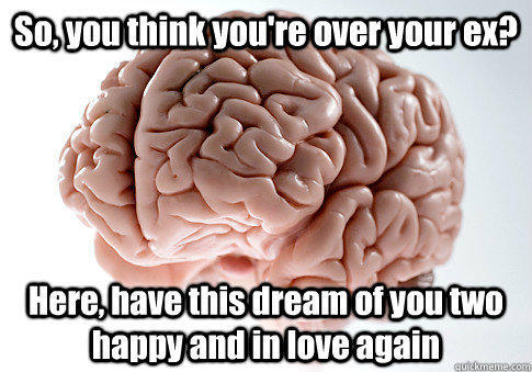 So, you think you're over your ex? Here, have this dream of you two happy and in love again  - So, you think you're over your ex? Here, have this dream of you two happy and in love again   Scumbag Brain