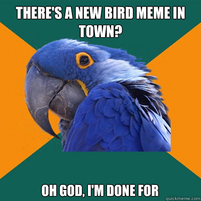 There's a new bird meme in town? Oh god, i'm done for - There's a new bird meme in town? Oh god, i'm done for  Paranoid Parrot
