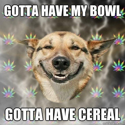 Gotta have my bowl Gotta have cereal - Gotta have my bowl Gotta have cereal  Stoner Dog