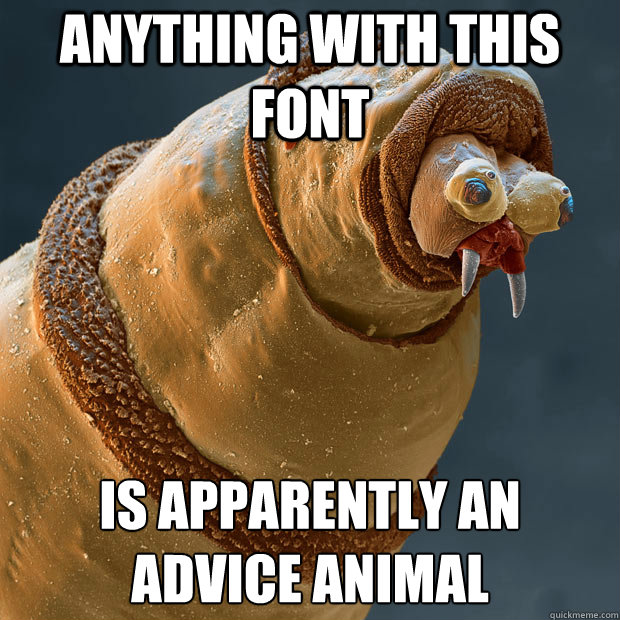 Anything with this font Is apparently an advice animal - Anything with this font Is apparently an advice animal  Derp larva