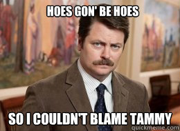Hoes gon' be hoes   so i couldn't blame tammy  Ron Swanson