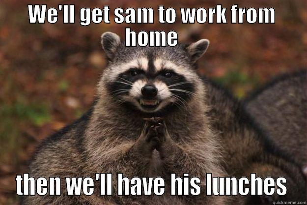 WE'LL GET SAM TO WORK FROM HOME THEN WE'LL HAVE HIS LUNCHES Evil Plotting Raccoon