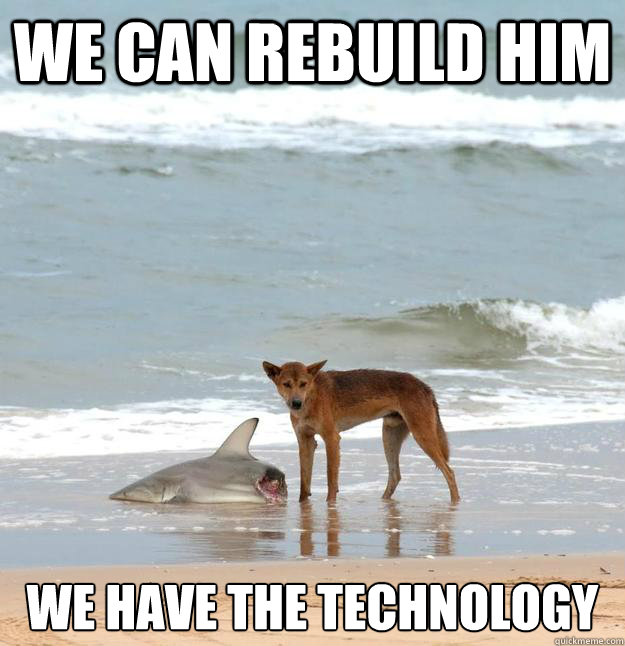 We can rebuild him we have the technology - We can rebuild him we have the technology  We have the technology