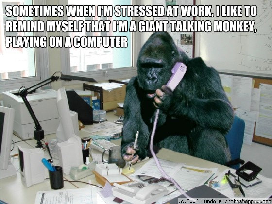 Sometimes when I'm stressed at work, I like to remind myself that I'm a giant talking monkey, playing on a computer  gorilla meme