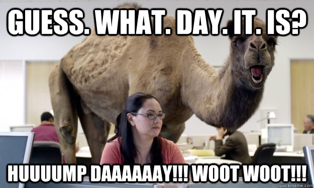 Guess. What. Day. It. Is? HUUUUMP Daaaaaay!!! WOOT WOOT!!! - Guess. What. Day. It. Is? HUUUUMP Daaaaaay!!! WOOT WOOT!!!  Hump Day Camel