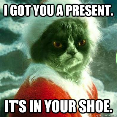 I got you a present. It's in your shoe.  Grumpy Cat Grinch