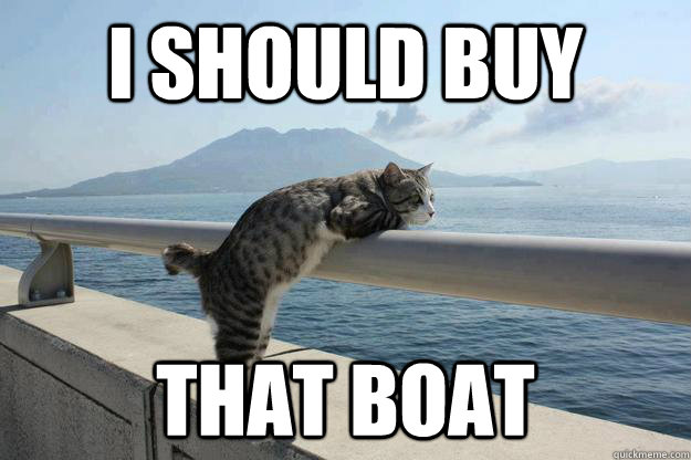 i should buy that boat - i should buy that boat  daydreamer cat
