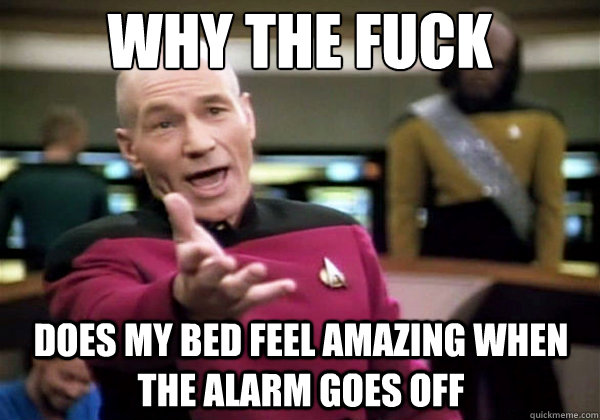 Why the fuck does my bed feel amazing when the alarm goes off - Why the fuck does my bed feel amazing when the alarm goes off  Why The Fuck Picard