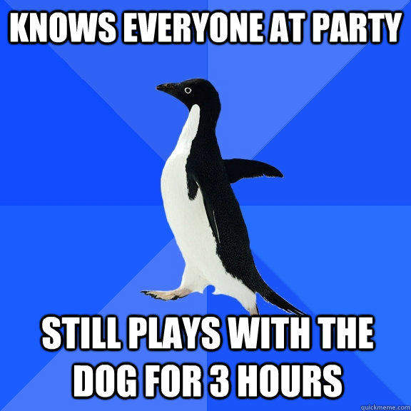 knows everyone at party still plays with the dog for 3 hours - knows everyone at party still plays with the dog for 3 hours  Socially Awkward Penguin