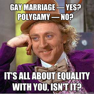 By what principal gay marriage polygamy