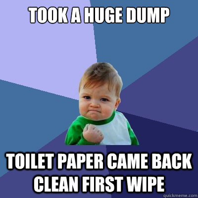 took a huge dump toilet paper came back clean first wipe - took a huge dump toilet paper came back clean first wipe  Success Kid