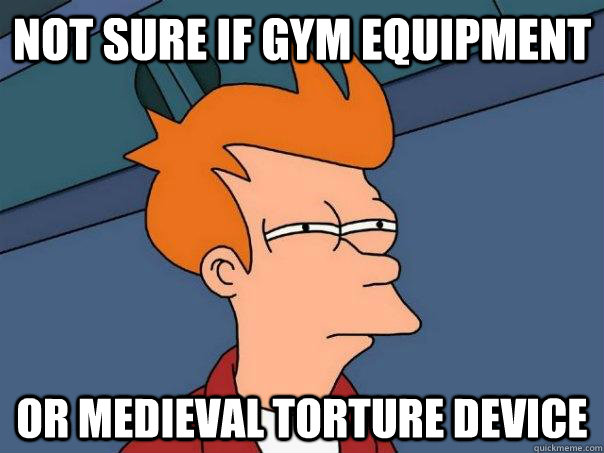 NOT SURE IF gym equipment OR Medieval torture device - NOT SURE IF gym equipment OR Medieval torture device  Futurama Fry