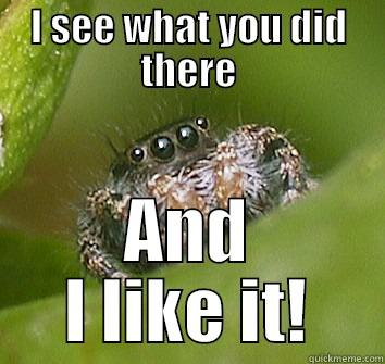 I SEE WHAT YOU DID THERE AND I LIKE IT! Misunderstood Spider