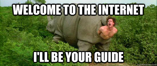 Welcome to the Internet I'll be your guide