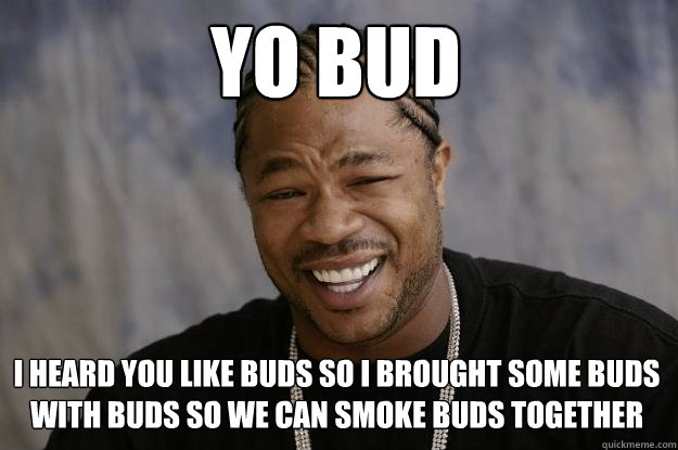 yo bud i heard you like buds so i brought some buds with buds so we can smoke buds together - yo bud i heard you like buds so i brought some buds with buds so we can smoke buds together  Xzibit meme