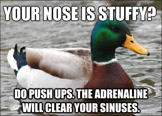 Your nose is stuffy? Do push ups. The adrenaline will clear your sinuses. - Your nose is stuffy? Do push ups. The adrenaline will clear your sinuses.  Actual Advice Mallard