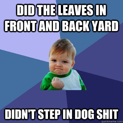 Did the leaves in front and back yard Didn't step in dog shit - Did the leaves in front and back yard Didn't step in dog shit  Success Kid