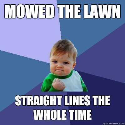 Mowed the lawn Straight lines the whole time - Mowed the lawn Straight lines the whole time  Success Kid