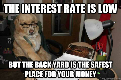 The interest rate is low But the back yard is the safest place for your money - The interest rate is low But the back yard is the safest place for your money  Financial Advice Dog