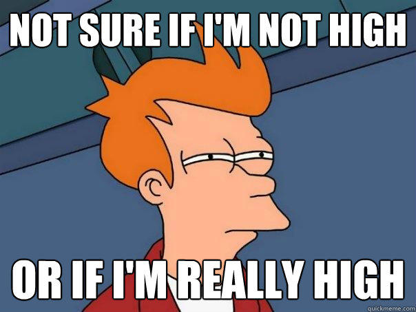 not sure if I'm not high or if I'm really high - not sure if I'm not high or if I'm really high  Futurama Fry