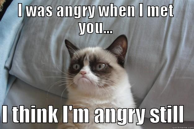 I WAS ANGRY WHEN I MET YOU...  I THINK I'M ANGRY STILL  Grumpy Cat