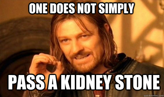 one does not simply pass a kidney stone - one does not simply pass a kidney stone  Boromir