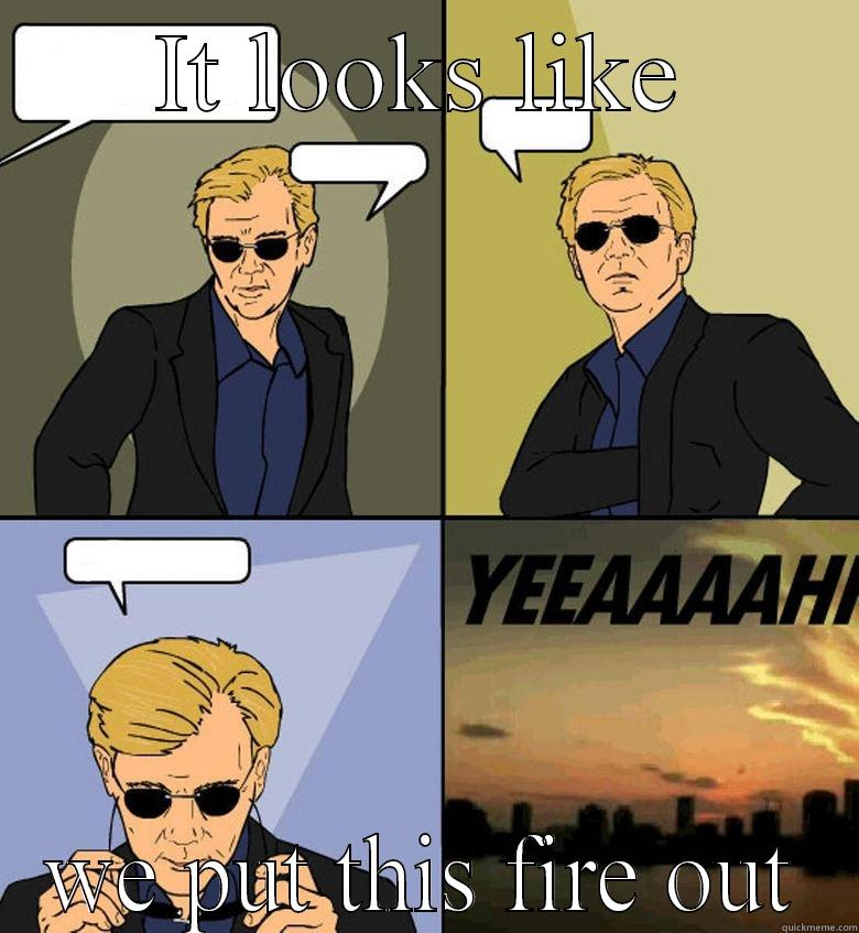 IT LOOKS LIKE WE PUT THIS FIRE OUT Horatio Cane YEEAAAAHH
