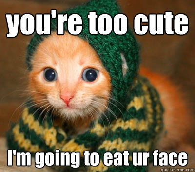 146369c9a2c3bbc09e1dccb0115b3d96772f7388d17c1e2f714adb0eaddba116 you're too cute i'm going to eat ur face cuteness overload quickmeme