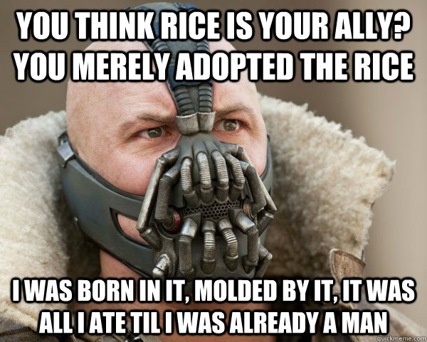 You think rice is your ally? you merely adopted the Rice I was born in it, molded by it, it was all i ate til i was already a man - You think rice is your ally? you merely adopted the Rice I was born in it, molded by it, it was all i ate til i was already a man  Bane Connery