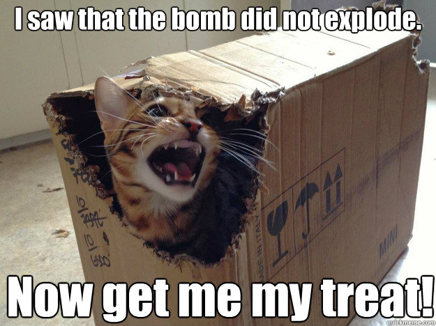 I saw that the bomb did not explode. Now get me my treat!