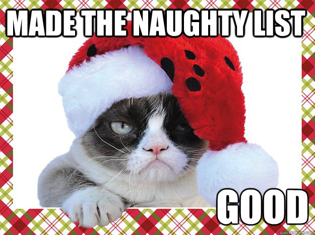 Made the naughty list good  A Grumpy Cat Christmas
