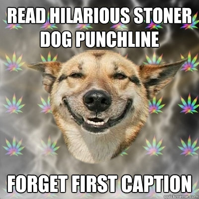 Read hilarious Stoner Dog punchline Forget first caption - Read hilarious Stoner Dog punchline Forget first caption  Stoner Dog