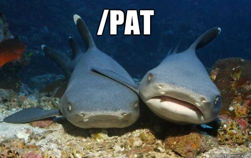 Image result for shark hug