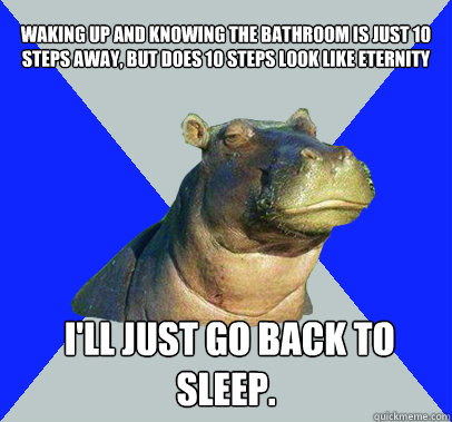 waking up and knowing the bathroom is just 10 steps away, but does 10 steps look like eternity    I'll just go back to sleep.   Skeptical Hippo