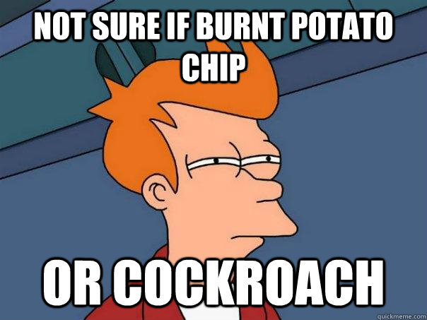 Not sure if burnt potato chip Or cockroach - Not sure if burnt potato chip Or cockroach  Futurama Fry
