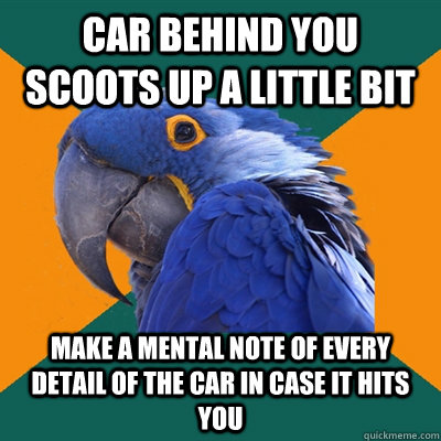 Car behind you scoots up a little bit Make a mental note of every detail of the car in case it hits you - Car behind you scoots up a little bit Make a mental note of every detail of the car in case it hits you  Paranoid Parrot