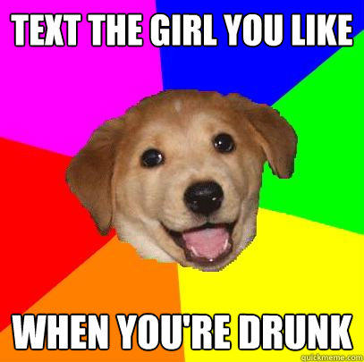 Text the girl you like  When you're drunk - Text the girl you like  When you're drunk  Advice Dog
