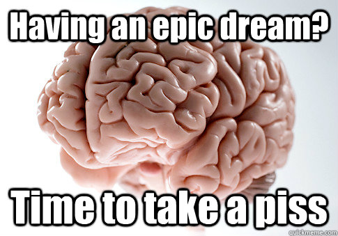 Having an epic dream? Time to take a piss - Having an epic dream? Time to take a piss  Scumbag Brain