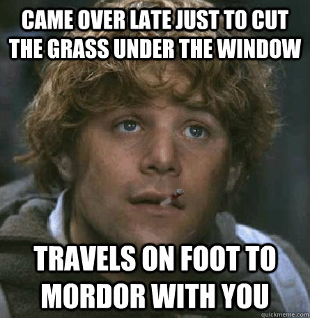 came over late just to cut the grass under the window  travels on foot to mordor with you