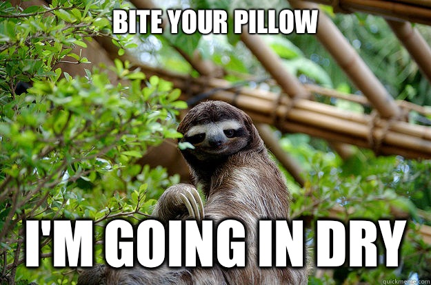 Bite your pillow  I'm going in dry  Seductive Sloth