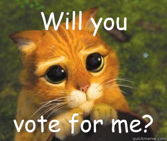 Will you vote for me?